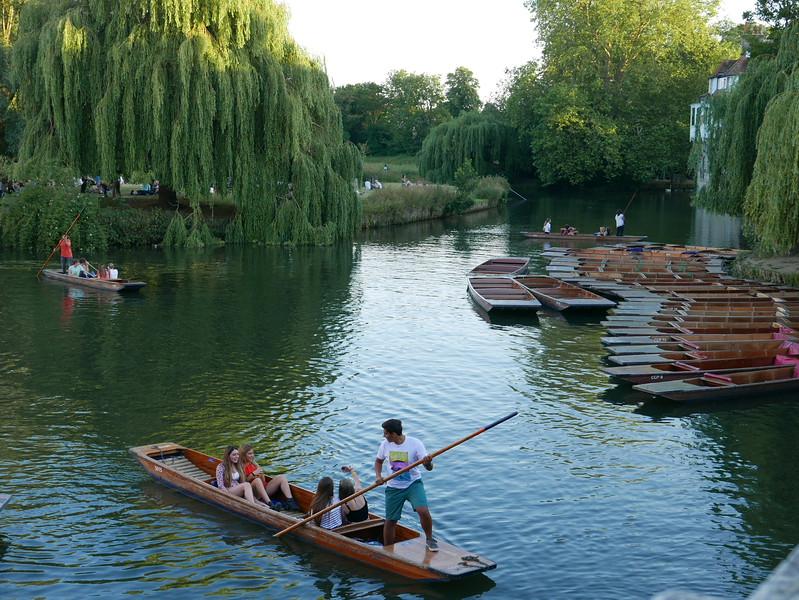 @RobAng Juni 2015 / Cambridge, Market Ward, England, GBR, Grossbritanien / Great Britain, 14 m ü/M, 2015/06/30 21:22:20