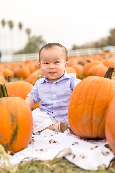 oliver_ella_pumpkin_patch-17.jpg