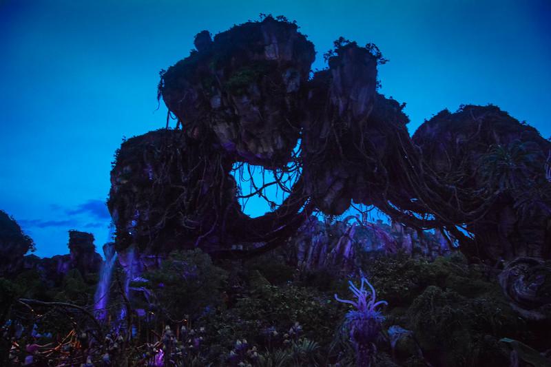 Disney World278.jpg