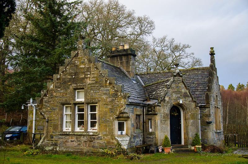 Scotland-Highland-9065.jpg