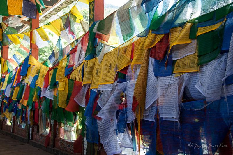 Bhutan-7680.jpg