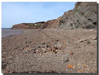 Joggins Fossil Cliifs - UNESCO World Heritage Site