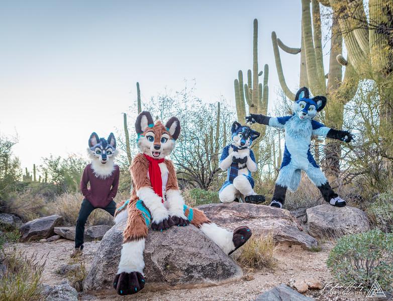 Arizona New Years 2019-060-HDR-Edit.jpg