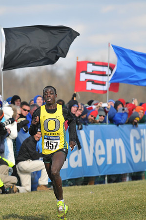 Men's Finish - 2013 NCAA D1 XC Championships