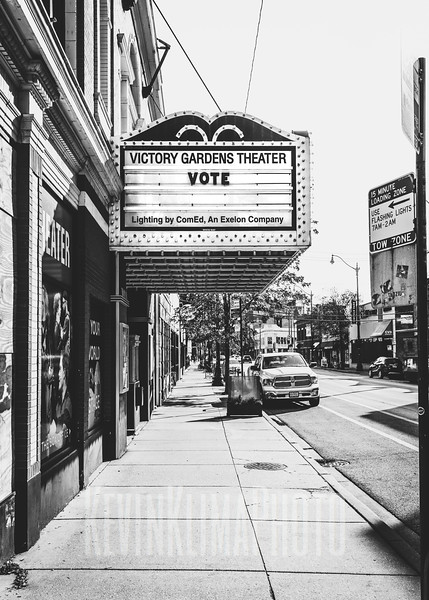 Victory Gardens Theater - Vote