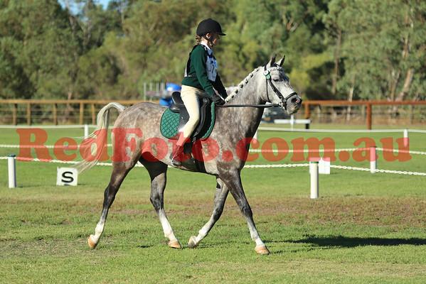 2014 03 01 Serpentine HPC 2DE I Dressage Arenas 7 8