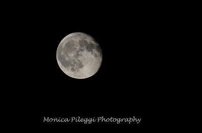 Moon shots 2016