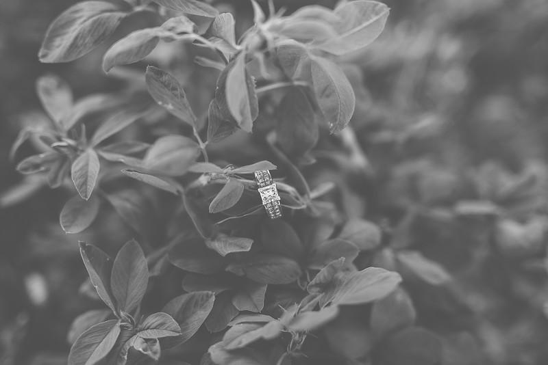 Engagements-248.jpg