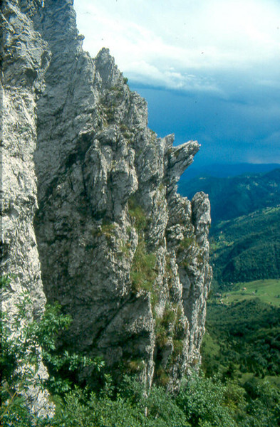 Alps, Giudicarian Alps, 2000