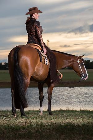 Christensen Show Horses