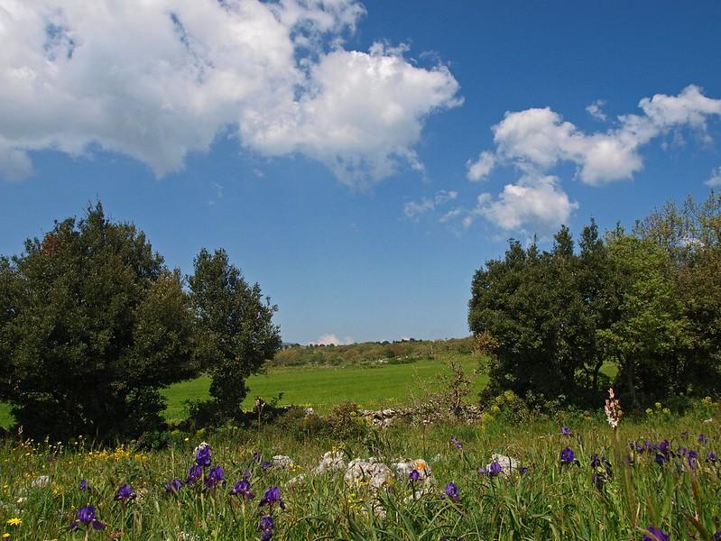 Monte Sacro Mattinata 29-04-10 (86).jpg