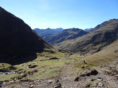 Peru Day 5: Huchuyccasa Pass