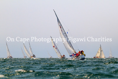 Figawi 2012 Race