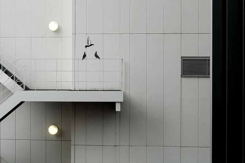 2019-09-11 Tokyo-352.jpg