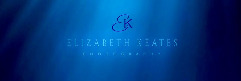 ElizabethKeatespanel.jpg