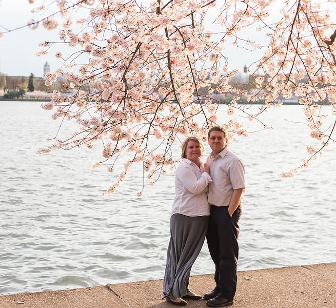 CherryBlossom-41.jpg