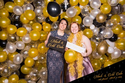 Black and Gold- 2019