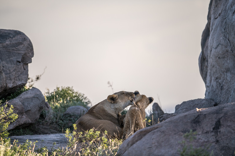 Tanzania_Feb_2018-559.jpg