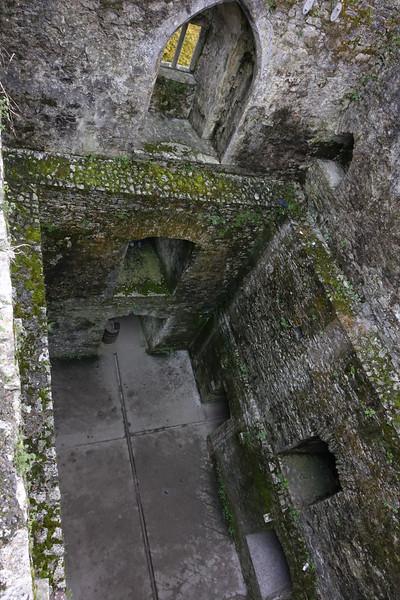Blarney Castle_Blarney_Ireland_GJP01711.jpg