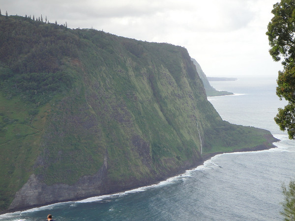 Big Island Robertsons Waipi'o Valley
