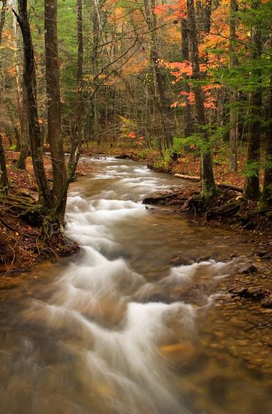 boggs creek 12x18_6195.jpg