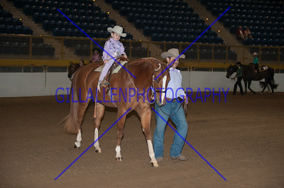 2012 Fall Charity Leadline