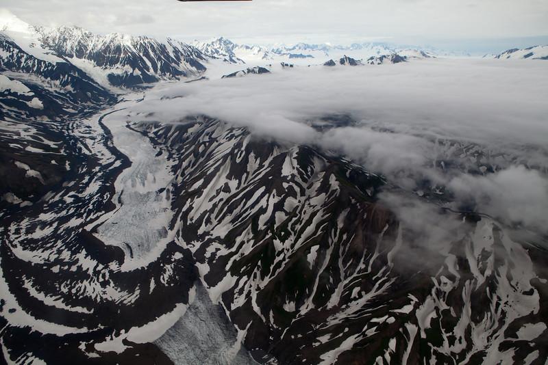 Alaska Icy Bay-4641.jpg