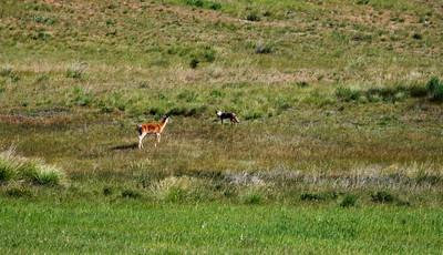 Lost Trail Wildlife Preserve
