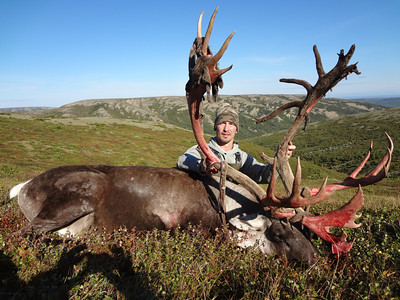 Alaska Wilderness Safaris