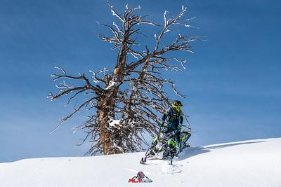 2019 Prov Canyon Snowhawks-Zbroz-TTRP