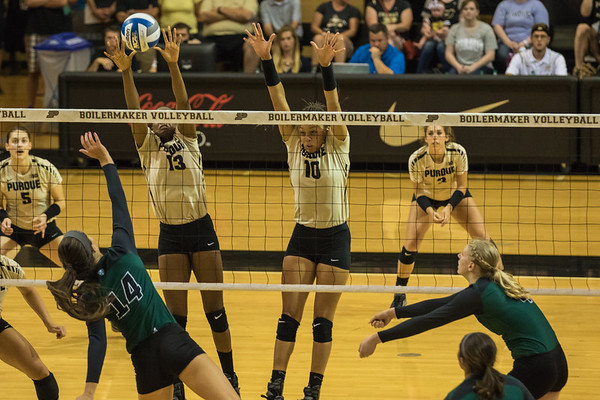 Purdue Volleyball vs Ohio 2015-8-29