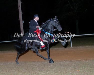 CLASS 38  WALKING HORSE CHAMPIONSHIP