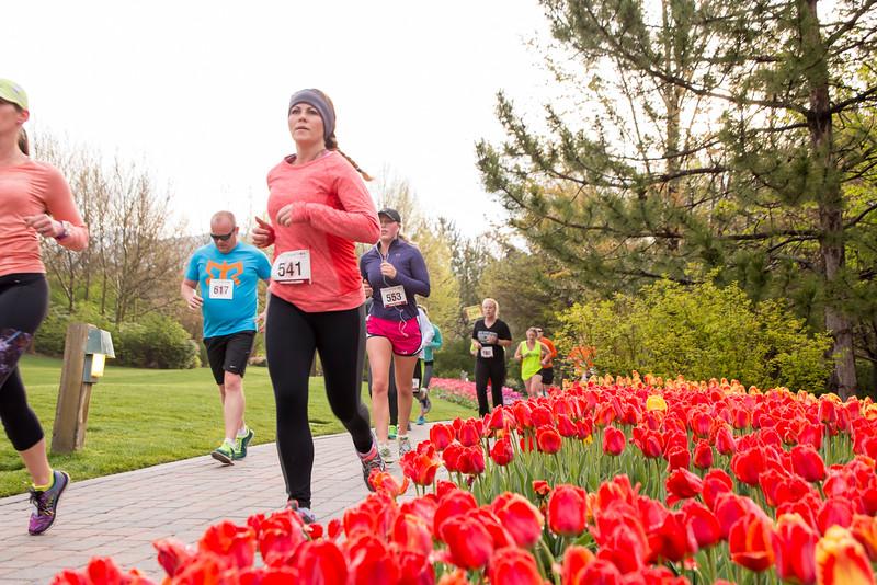TulipFestHalfMarathon_Runners_Gardens_2015_IMG_4805.jpg
