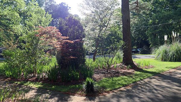 April 9:  The yard looks good .  .  .