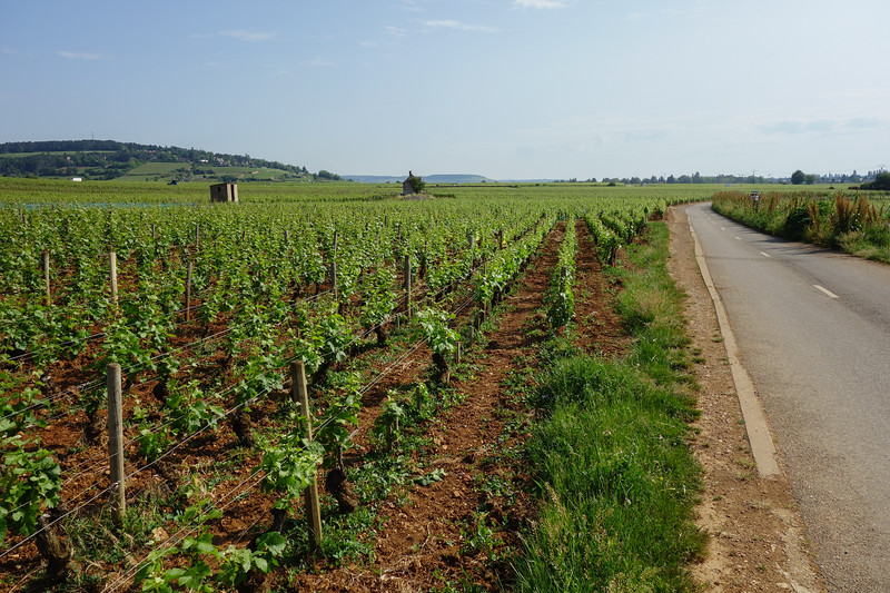 South of Beaune