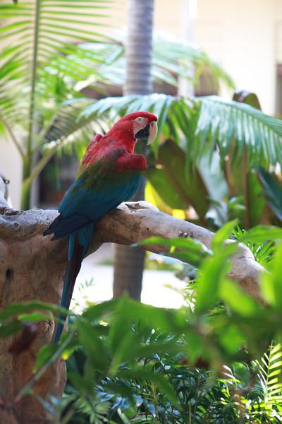Kauai_D5_AM 198.jpg