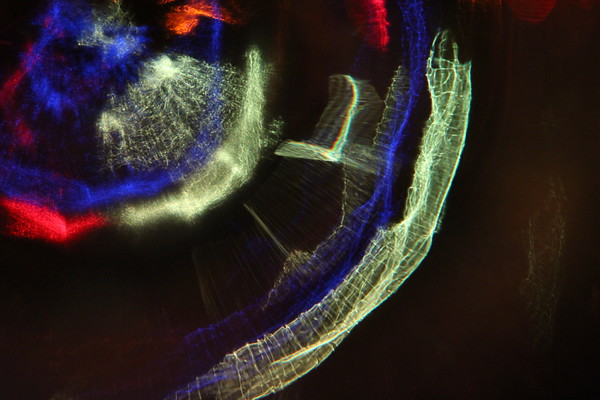Refractographs/Light Painting