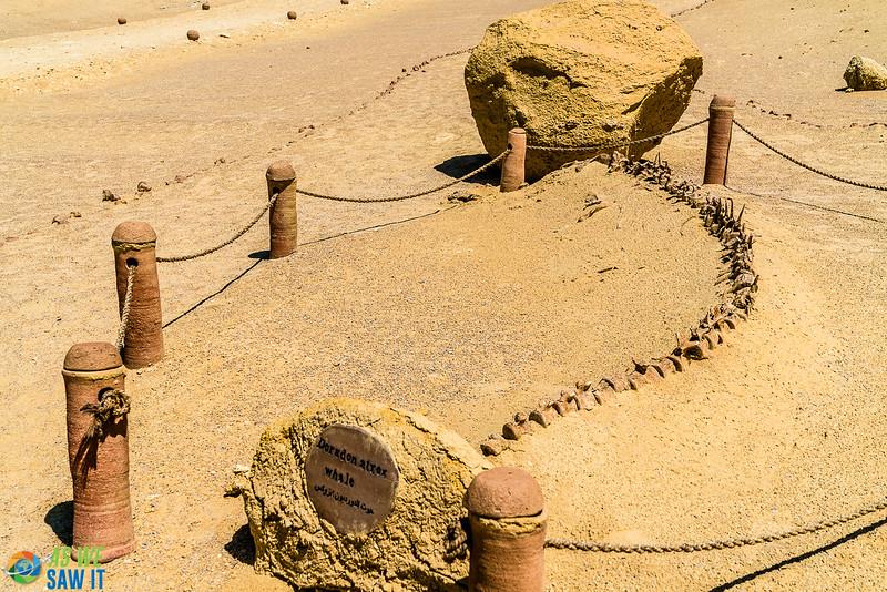 Wadi-El-Hitaan-02351.jpg