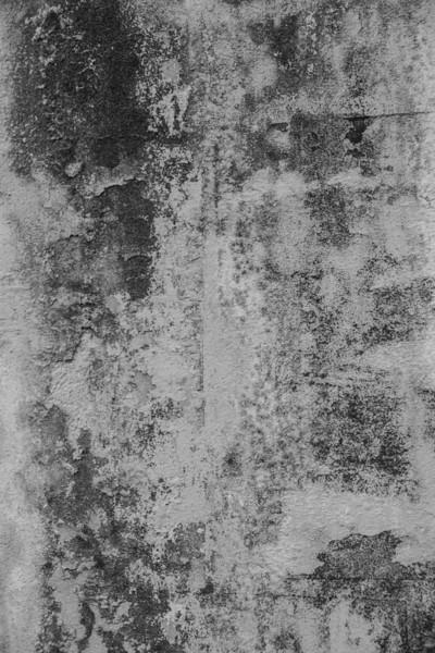 61-Lindsay-Adler-Photography-Firenze-Textures-BW.jpg