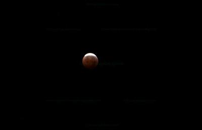 Lunar Eclipse 12-2010