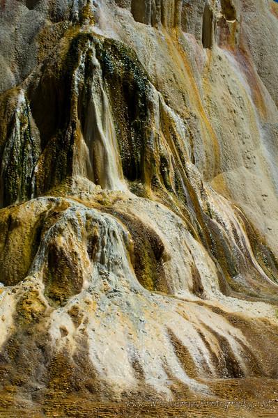 20100713_Yellowstone_2794_1.jpg