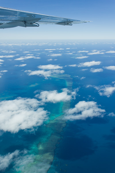 Above the Reef 3