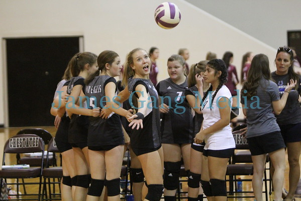 VOLLEYBALL - 2016 Chestatee High School