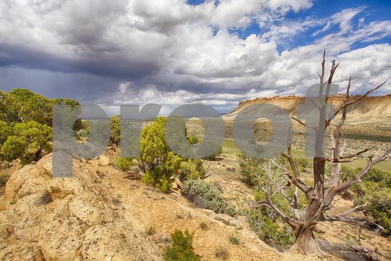 Burr-Noton Trail 7119_HDR.jpg