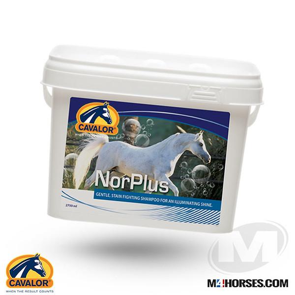 NorPlus.jpg