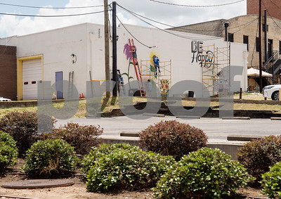 6/15/18 Wildflowers Mural in Downtown Tyler by Sarah A. Miller