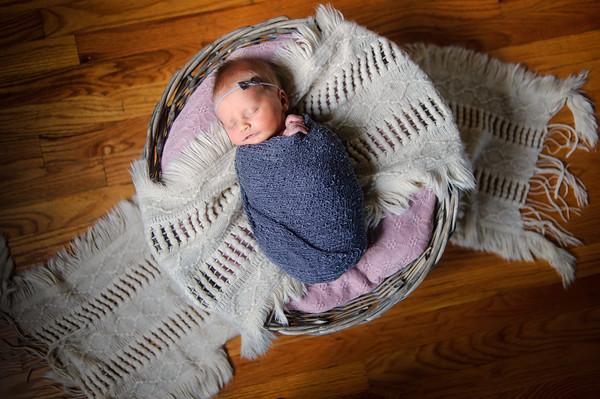 Smallwood Newborn