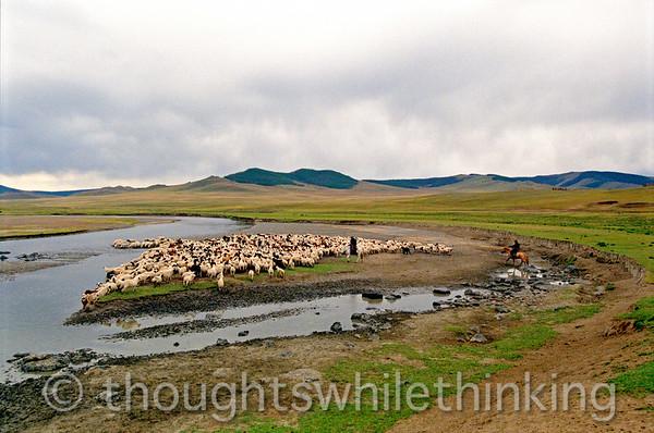 Mongolia 2008 - Erdene Zuu Monastery, Karakhorum, Tseterleg, Horgo Volcano