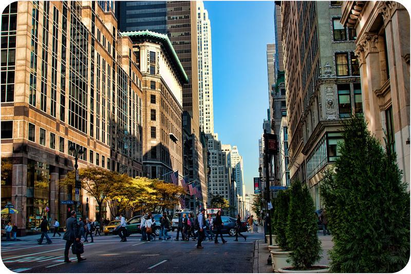NY2009-1004.jpg