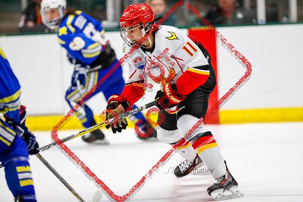 1600_AtlantaPhoenix_HockeyClubDallas_2A_FA